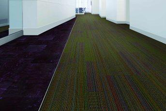 Office Hallway V1-1101_V7