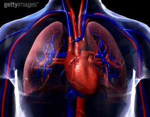 Sem coração não há razão para viver