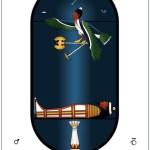 Alchemy and Kabbalah in the Tarot 20