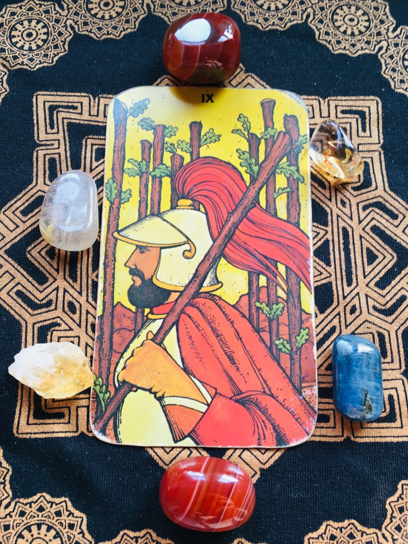 Nine of Rods Tarot card