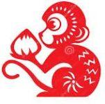 monkey - Year of Monkey 2016 Forecast