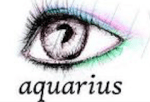 aquarius - The perfect X'mas gift for each Zodiac sign