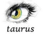 taurus - The perfect X'mas gift for each Zodiac sign