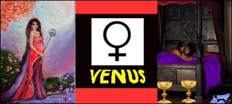 How to survive Venus Retrograde! (Update for 2020)