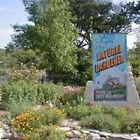 Natural Gardener Austin