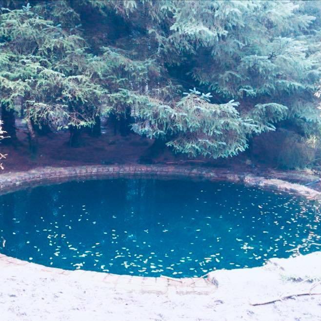 Circular Torwood blue pool