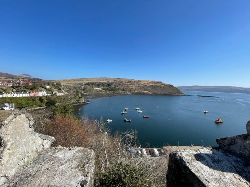 View from tower at Portree overlooking harbour