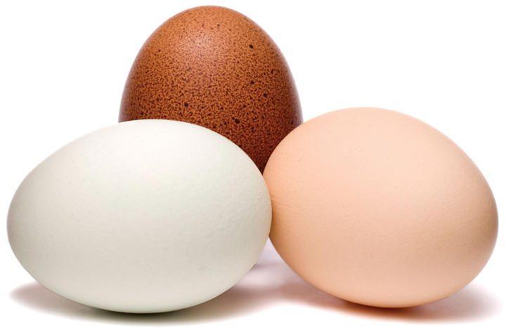البيض : مصدر غذائي مضطهد