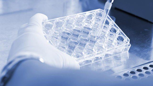 عقار تجريبي يكبح نمو الأورام الجلدية الخبيثة