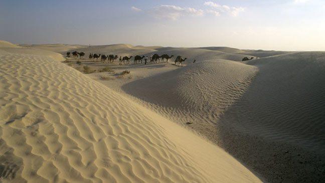 ناسا تعرض فيديو انتقال الغبار من الصحراء إلى دلتا الأمازون