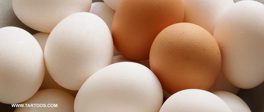 البيض يقلل خطر الإصابة بسرطان الثدي والزبدة تزيده