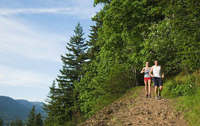 خمسة حلول طبية للمكافحة المستدامة للسمنة