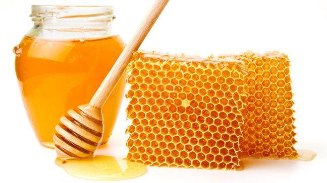 العسل دواء ومطهر للجروح
