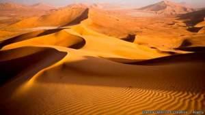 الجزيرة العربية كانت جنة خضراء من الغابات والحشائش