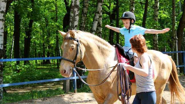 الحصان تساعد في علاج الاضطرابات النفسية