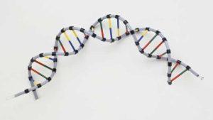 علماء بريطانيون يطورن اختبارا للكشف عن معدلات الشيخوخة