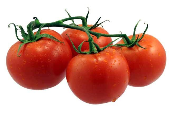 فائدة الطماطم