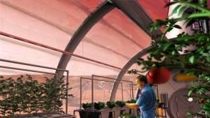 تربة المريخ أكثر خصوبة من تربة القمر