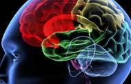 العلماء يكشفون الجين المسؤول عن الجلطة الدماغية