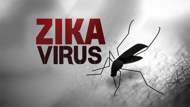 استنساخ فيروس زيكا على أمل إيجاد لقاح للمرض