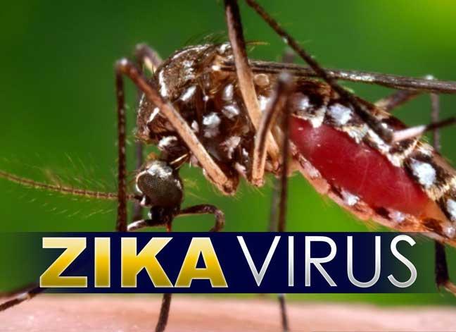 تطوير طرق جديدة للكشف عن فيروس زيكا