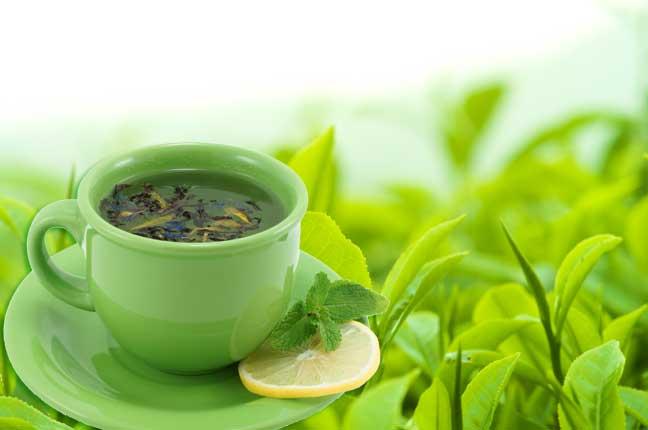 الشاي الأخضر يساهم في علاج متلازمة داون