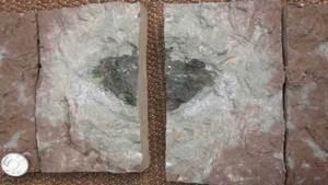 اكتشاف نوع من النيازك عمره يقارب 500 مليون سنة