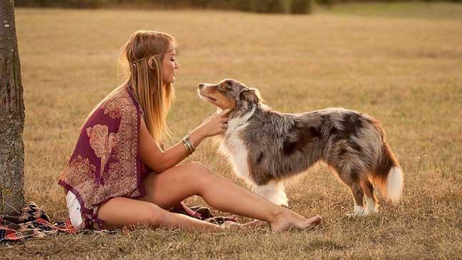 تربية الكلاب بدأت مع الانسان القديم