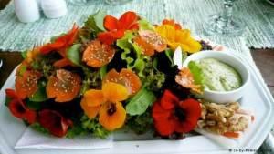 هل أكلت الورد يوما فوق أطباق الطعام!