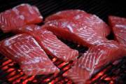 علماء: زيت السمك يقي من خطر الوفاة بأمراض القلب