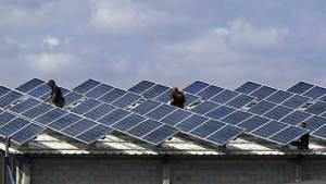 أسقف شمسية من تسلا