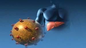 تنبؤات بالقضاء نهائيا على فيروس التهاب الكبد C