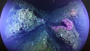 صور مذهلة عن تدفق الحمم البركانية تحت الماء