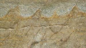 اكتشاف أقدم حفريات على وجه الأرض في غرينلاند