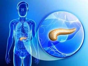 بنكرياس صناعي ينظّم معدل السكر في الدم بشكل طبيعي