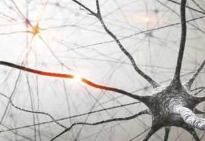 اكتشاف طريقة واعدة لعلاج مرض الزهايمر