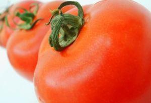 الطماطم تقهر المرض