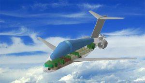 مهندسون روس يصممون أول طائرة تعمل على الهيدروجين