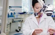 إنماء أمعاء من خلايا جذعية في اليابان