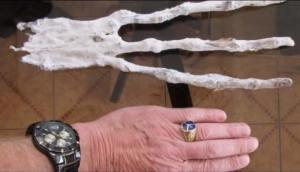 يد عملاقة بثلاثة أصابع قد تعود لكائن فضائي