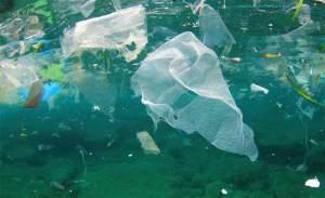 البلاستيك يغزو المحيطات ويزيح الأسماك