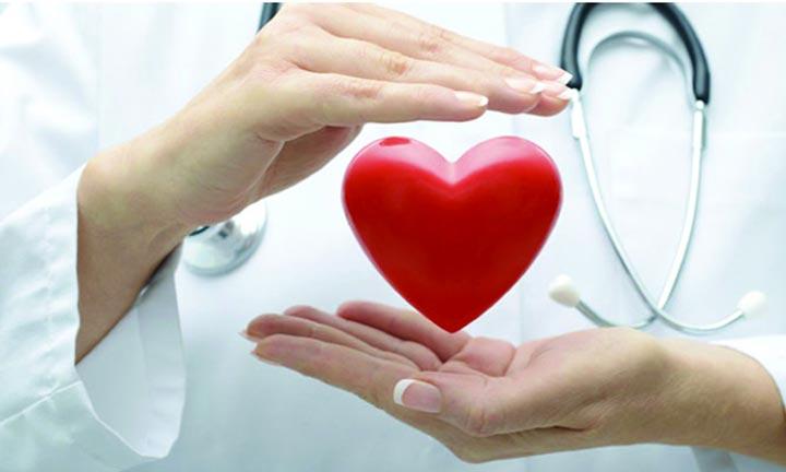 أفضل فيتامين لإنعاش القلب والأوعية الدموية