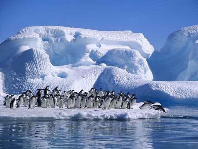 تحديث الرقم القياسي لأدنى درجات الحرارة في نصف الكرة الأرضية الشمالي