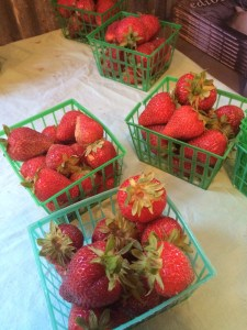 I just got the last of the strawberries for the day.
