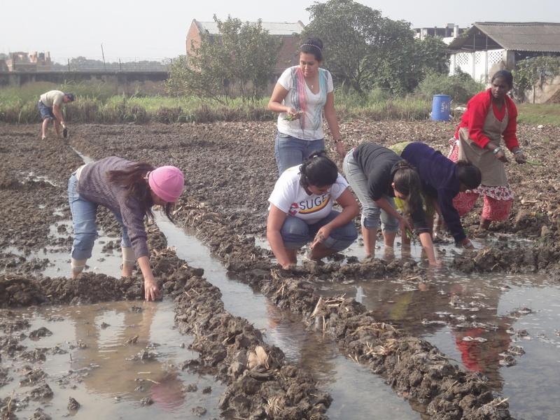 Honduran Zamorano University Students promoted solidarity with Indian students (2/6)