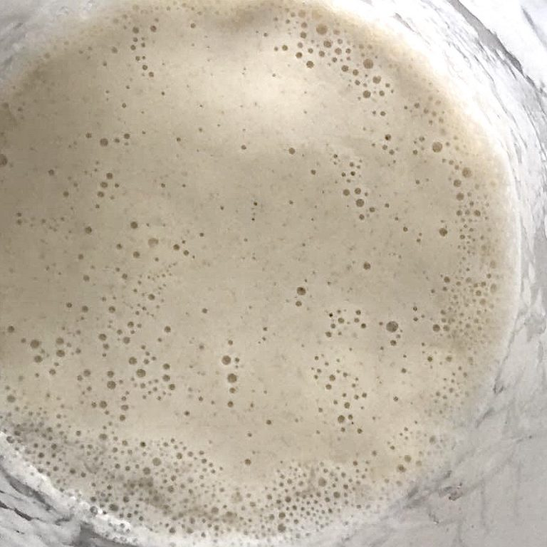 Bubbly_SourdoughStarter.jpg