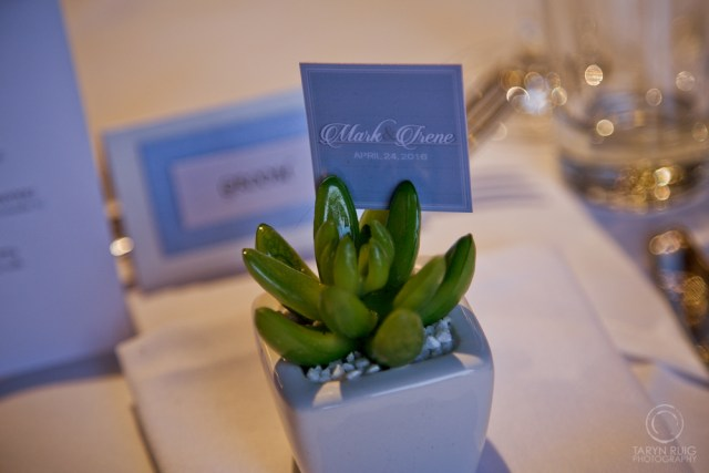 succulent-name-holders-at-wedding