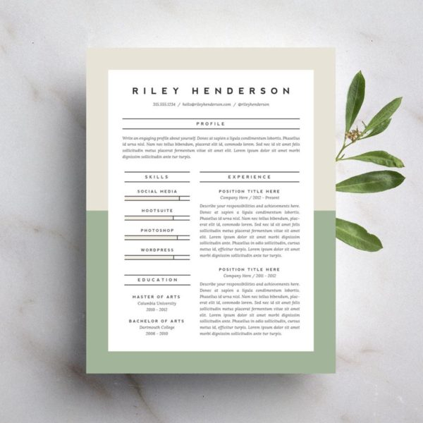 15 Beautiful Resumes You Can Buy on Etsy  Taryn Williford