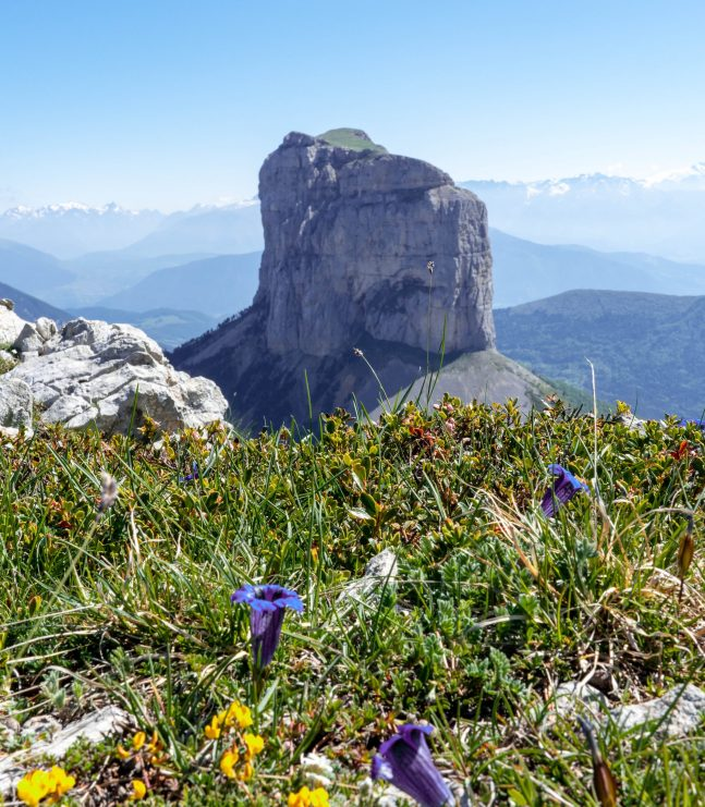Repas avec vue sur le Mont Aiguille