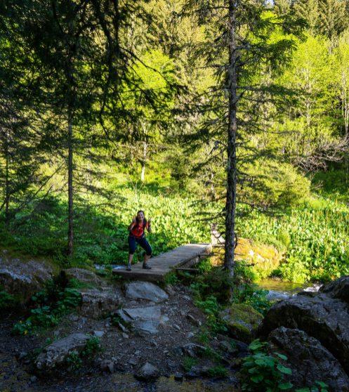 Sortir de la route forestière